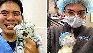 15 случаев, когда ветеринары не смогли устоять перед тем, чтобы не сфотографироваться с невероятно милыми животными