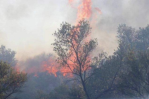 Hangi İlde Orman Yangınları Devam Ediyor?