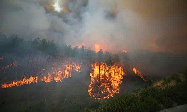 Bu nedenler tabii ki insan kaynaklı. Doğa olaylarının doğal felaketlere, afetlere dönmesinin sebebi doğayla uyumlanamamış insandır.