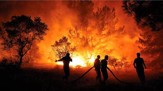 Yangınların başlangıcından bu yana 547 bin dekarlık alan yok oldu; ormanlarımız alev alev yandı ve biz hiçbir şey yapamadık.