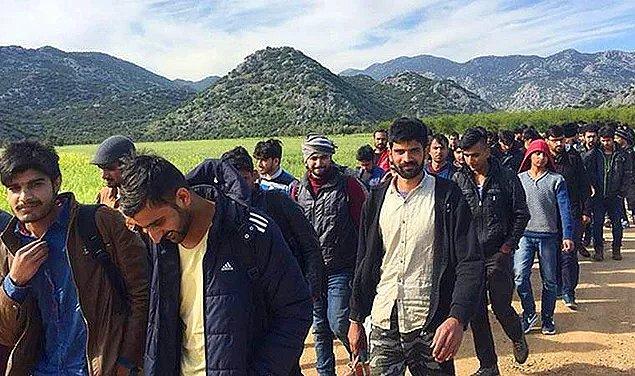 """Mülteci krizi son zamanlarda artan tepkilerle etkileşim almak isteyen hesapların yarattığı """"yanlış bilgi krizine"""" dönüştü."""
