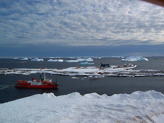 Araştırmacılar 1960'lı yıllardan beri penguen kolonilerini gözlemliyor.