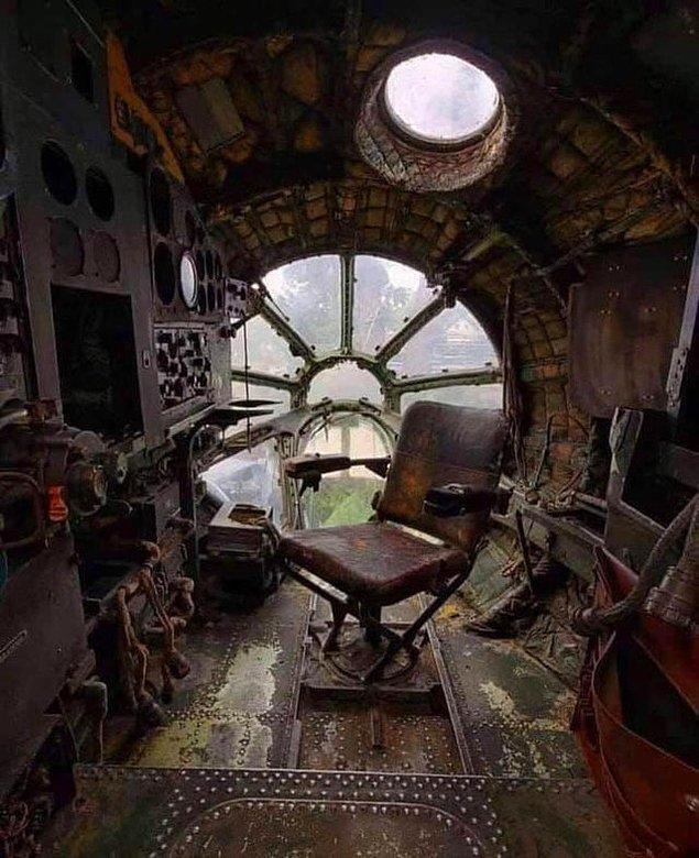 8. Sovyetler döneminden terk edilmiş bir jet ve içerisinde kendi yuvasını bulan doğa...