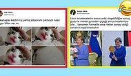 Ruj Yiyen Kediden Angela Merkel'e Çiçek Veren Putin'e Son 24 Saatin Twitter'da Viral Olan Paylaşımları