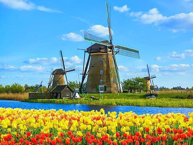 11. Hollanda - 40,5 saat