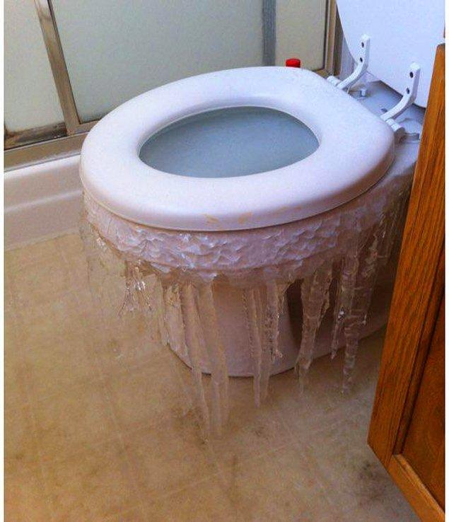 """5. """"Dallas'taki bir evin tuvaletinin geldiği hal."""""""