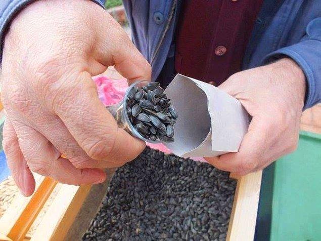 12. Bakkal Amca'nın çay bardağı hesabıyla verdiği ay çekirdeğinin tadını şu an kuruyemişçilerde bulmanın imkanı yok.