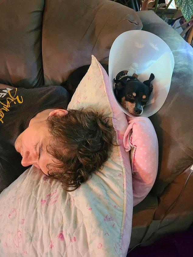 """9. """"Barınaktan sahiplendiğimizde bizi yanına bile yaklaştırmayan köpeğimiz bugün eşimin yanına uzandı ve birlikte uyudular."""""""