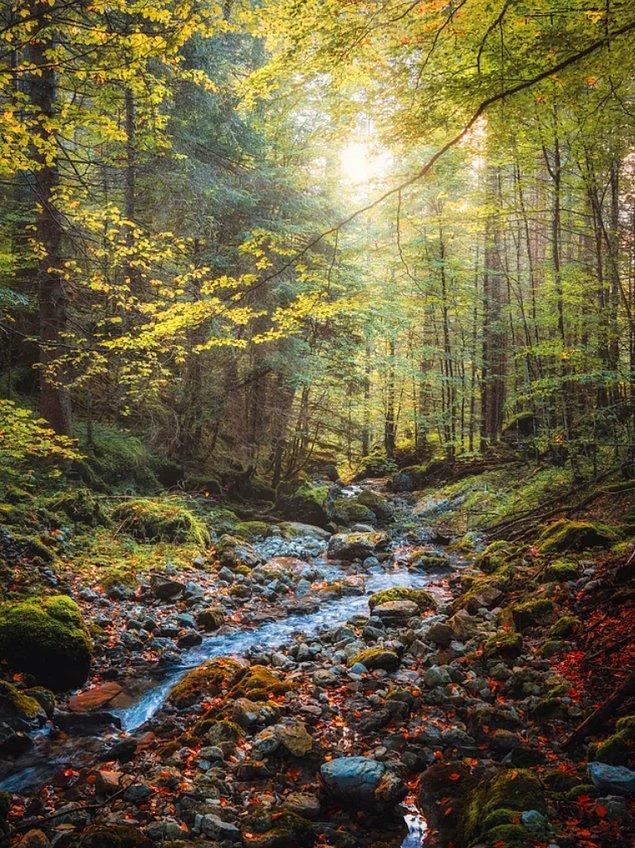 17. Güney Almanya sonbahar manzaraları...