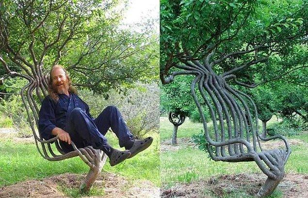 6. 12 yıl boyunca düzenli aralıklarla ağacı bu forma dönüştürmek için uğraşan ve sonunda amacına ulaşan adam: