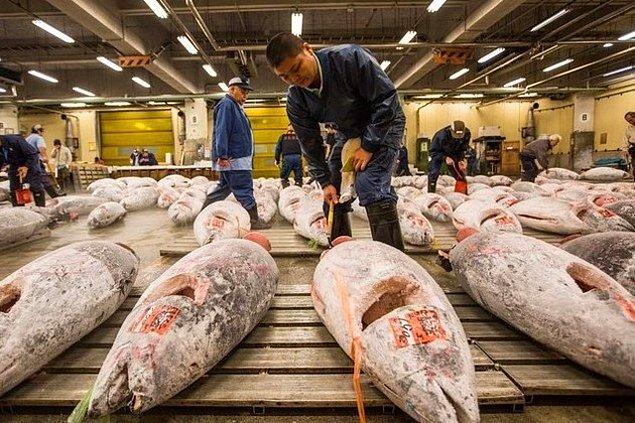 11. Tokyo'daki Tsukuji Balık Pazarı