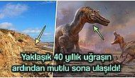 Yapılan Kazılar Sonucunda İngiltere'de Daha Önce Görülmemiş İki Tür Yeni Dinozor Keşfedildi!