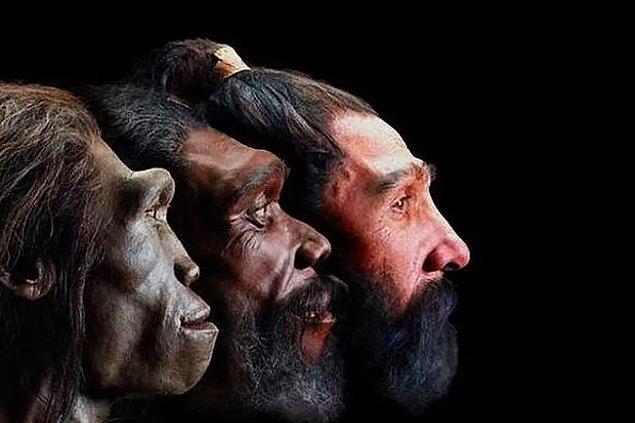 12. ''Evrim var mı?'' sorusu ve uzun tartışmalar