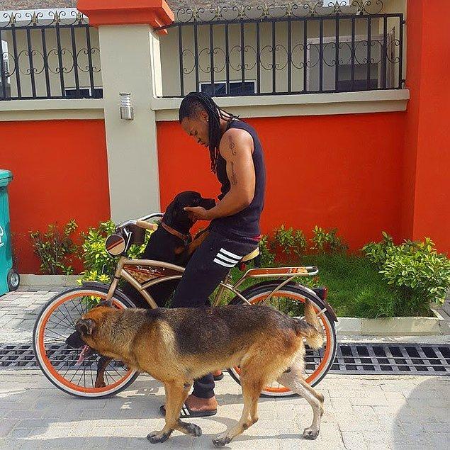 """17. """"Nijeryalılar evcil hayvan beslemeyi sevmez. Özellikle yabancıların evde köpek beslediğini görünce şaşırıyoruz, burada köpekler sadece av ya da koruma için kullanılır."""""""