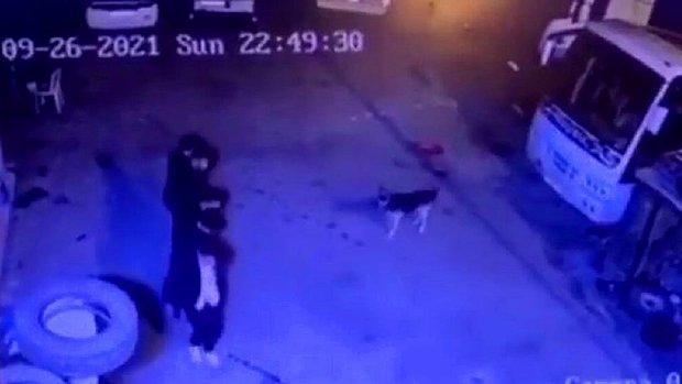 Önce Halay Çekip Köpekten Kaçtılar, Sonrasında Köpeği De Halaya Dahil Ettiler! İşte Viral Olan O Video...